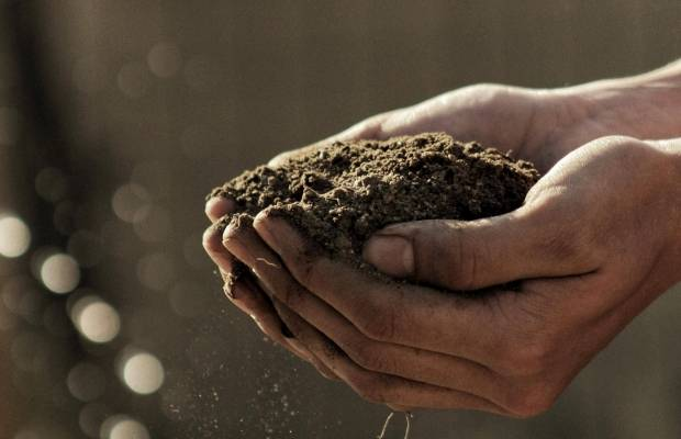 MSM Food Security Initiative