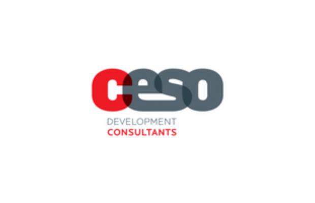 CESO development consultants