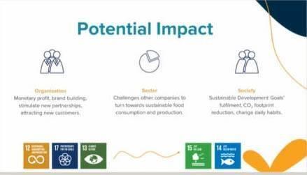 Potential SDG impact Solution MSM SDG team   Maastricht School of Management