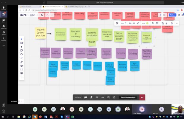 DACUM brainstorm session using Miro tool