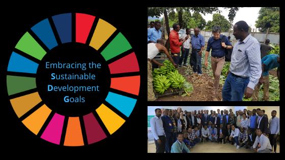 Embracing the Sustainable Development Goals – Zero Hunger | Maastricht School of Management